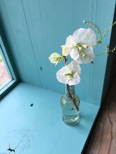 テーブル横に置かれた切り花