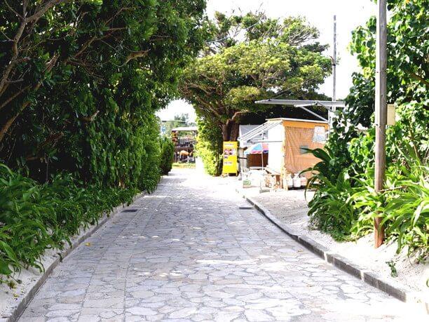 集落へ向かう小道
