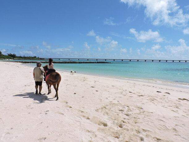 与那覇前浜ビーチでの乗馬体験