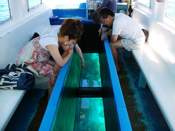 グラスボートの海底遊覧
