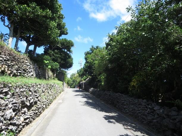祖納の集落風景や古民家