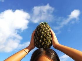 石垣島のパイナップル