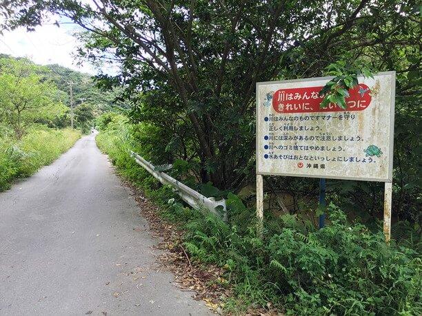 ジャングルのような細い道
