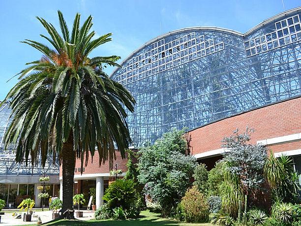 夢の島熱帯植物館画像