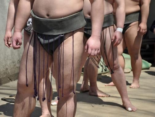 相撲部屋朝稽古見学