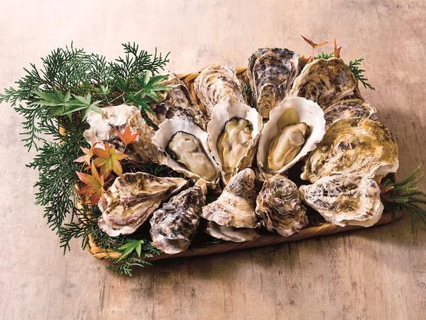 クリーミーな「殻付き蒸し牡蠣」
