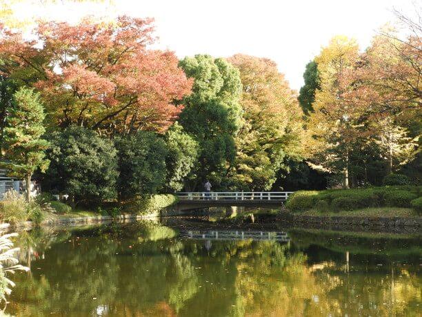 紅葉が映る池