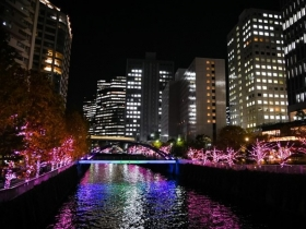 Illuminations 2017 of all the cherry tree Meguro River of the Meguro River shining in winter