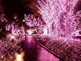 Night to shine in illuminations Shinjuku Minami Lumi of the Shinjuku south exit
